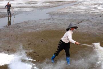 小龙虾池塘一亩用多少石灰消毒计算
