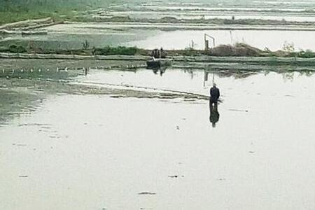 小龙虾养殖前期肥水的重要性