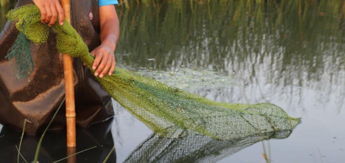 冬季能养殖小龙虾吗?