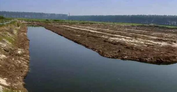 养殖小龙虾繁殖池塘如何建造?