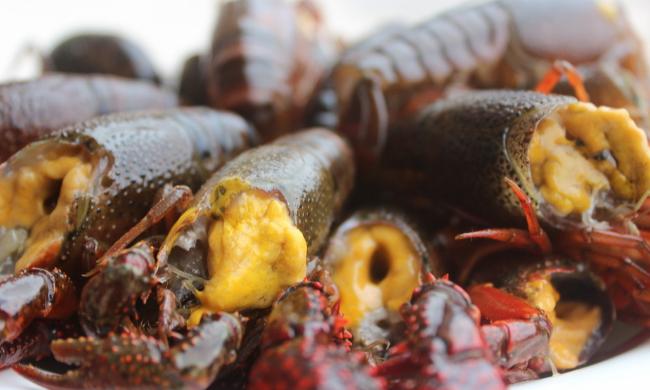 小龙虾孕妇能吃吗?