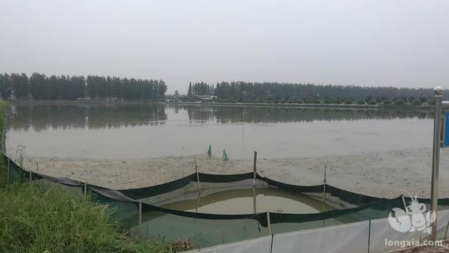 龙虾塘口里残留的饵料、排泄物等各类有机废物恶化水体,怎么办?