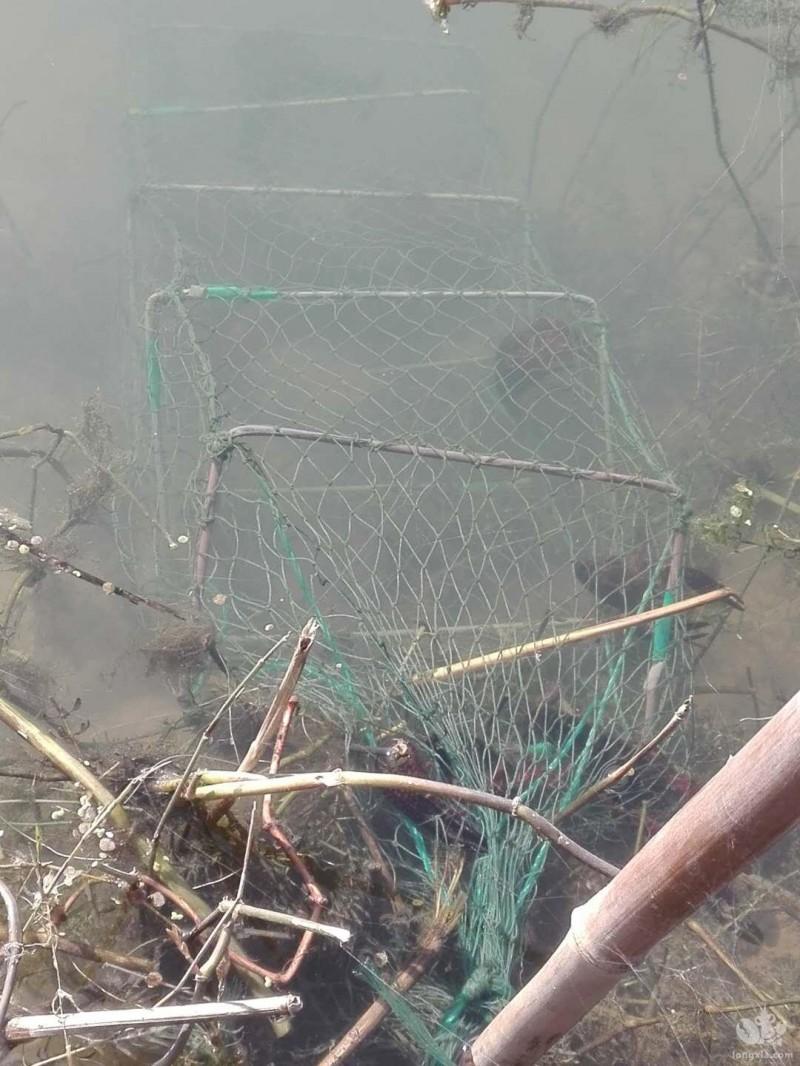 地笼的使用保养和消耗,直接关系到小龙虾产量,如何正确操作呢?