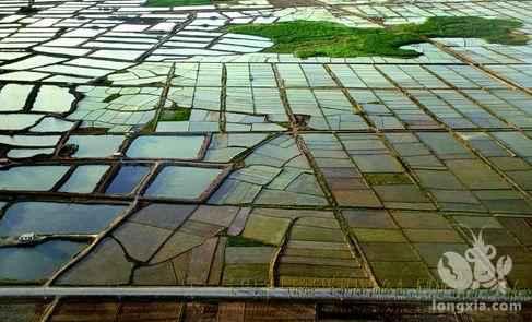 湖南常德稻虾种养产业风生水起