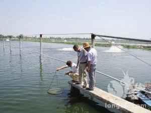 冬天虾塘管理要点  来源:小龙虾信息网  http://www.xiaolongxiaw.com/y