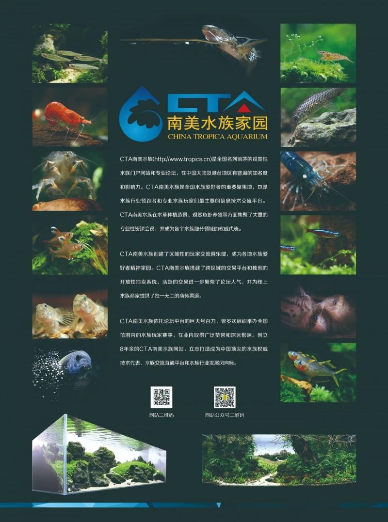 好消息:南美水族论坛将为GIAS广州水族展助力,带来更多新色彩!