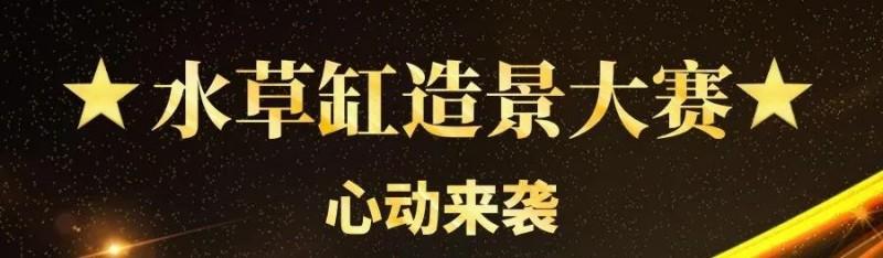 重磅消息!【首届CADC水草缸造景大赛】正式开启线上作品征集!