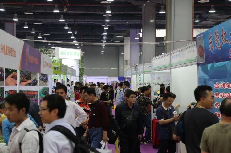 2020水族行业爆款展会,GIAS广州国际水族展强势来袭
