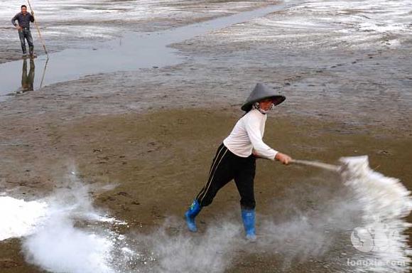 龙虾养殖池消毒方法
