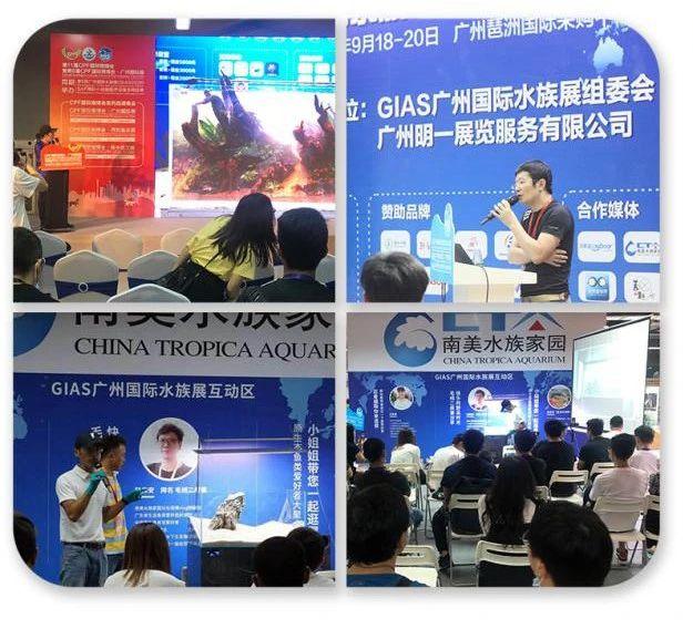 2021GIAS广州国际水族展行业解读:被严重低估的水族行业出路在哪里?