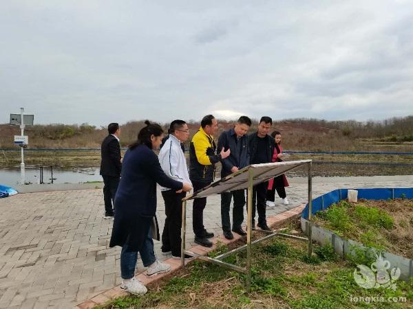 广东省南雄市:市统计局、南雄调查队联合开展小龙虾产业统计调研