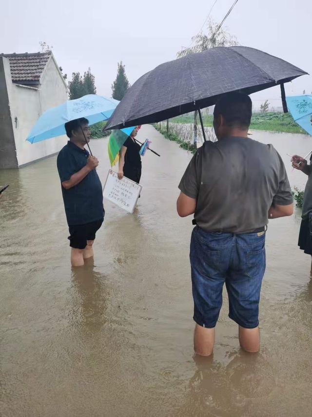 养殖户一分钱不用出,鱼台县4万多亩小龙虾特殊保险护航