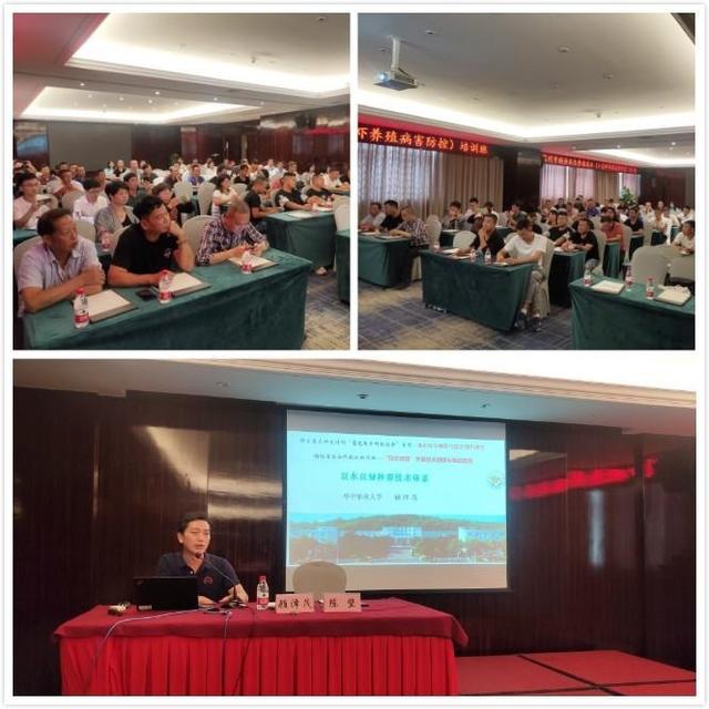 全市稻渔共生养殖技术(小龙虾养殖病害防控)培训班在瑞安召开