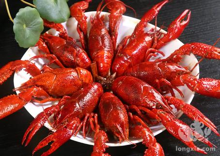 2019养殖小龙虾成本是多少?养殖利润会有多少?