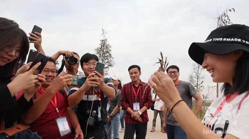 """走进中国清水龙虾之乡——网媒记者一手抓虾一手抓蟹成""""网红"""""""