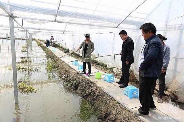 """虾蟹打破""""半年红""""瓶颈,投入600斤种苗,预计总收入30多万!"""
