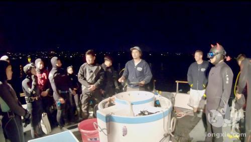 美国南加州迎来休闲捕捞龙虾季 华人分享抓龙虾诀窍