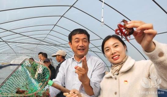 江苏灌云:养殖反季节龙虾即将上市