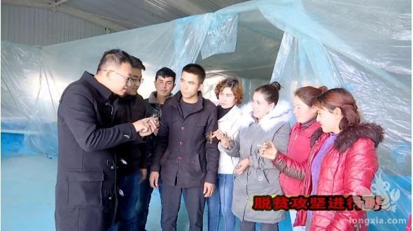 """新疆莎车村里的小龙虾变身""""致富虾"""""""
