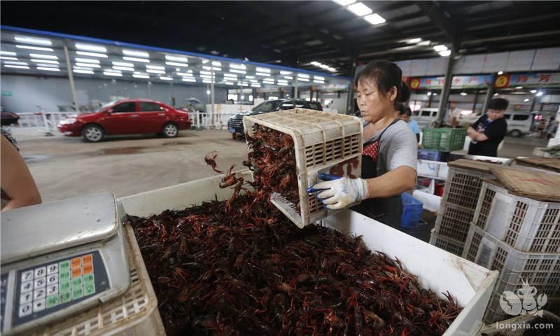 芜湖市实施小龙虾价格指数保险政策
