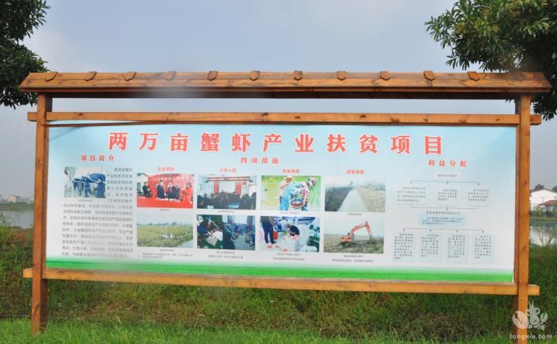 """湖南省岳阳市湘阴:""""小龙虾""""成为脱贫致富""""新引擎"""""""
