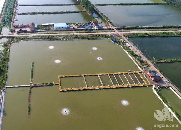 水产养殖池塘溶氧知多少?