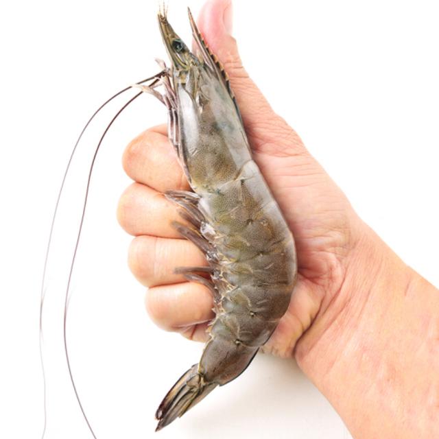 小龙虾如何养殖?巧妙利用农田空闲时间换效益,8种模式可以借鉴