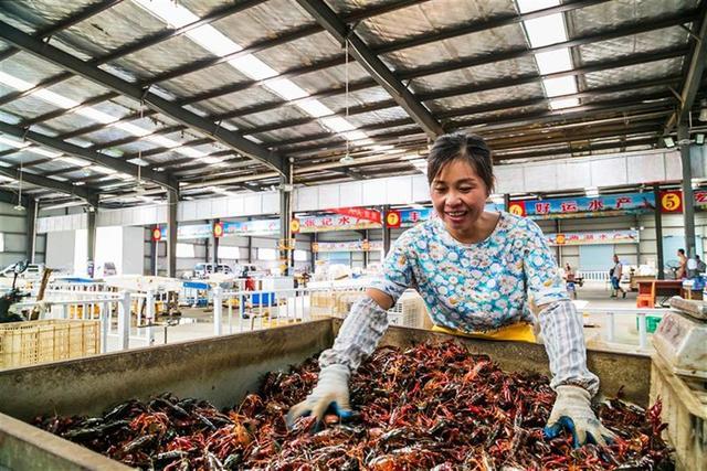 """触屏养虾,触网卖虾——""""小龙虾之乡""""掌控全国小龙虾价格指数"""